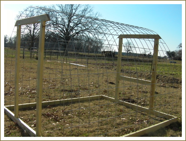 Kewer: Building a chicken coop with cattle panels